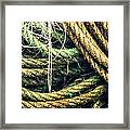 Fishing Rope Textures Framed Print