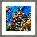 Fishtank Framed Print