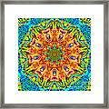 Flight Mandala Framed Print