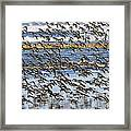 Flight Of The Pipers Framed Print