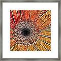 Floral Abstract Framed Print