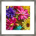 Floral Colors 1 Framed Print