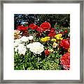 Floral Gardens Framed Print