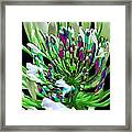 Flower Bunch Bush Sensual Exotic Valentine's Day Gifts Framed Print