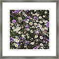 Flower Mix - Purple And White Framed Print