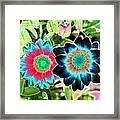 Flower Power 1449 Framed Print