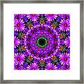 Flower Power Framed Print by Kristie  Bonnewell