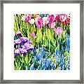 Flower Splash I Framed Print
