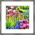 Flower Splash II Framed Print