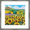 Flowered Garden Framed Print by Jean-Marc Janiaczyk