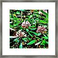 Flowered Tree Framed Print