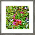 Flowering Blossoms Tree Paint Style Framed Print