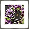 Flowering Vine  Framed Print