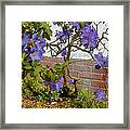 Flowers Against The Wall Framed Print