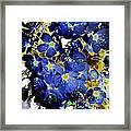 Flowers Blue Framed Print