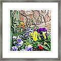 Flowers By The Wall Framed Print
