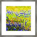 Flowers Field Background Framed Print