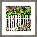 Flowers - Floral - White Picket Fence Framed Print