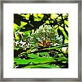 Flowers In The Woods Framed Print