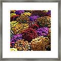Flowers Near The Grand Palais Off Of Champ Elysees In Paris France   Framed Print