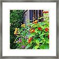 Flowers No 8 Framed Print