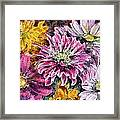Flowers Of Love Framed Print