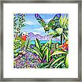 Flying Colours Framed Print by Carolyn Steele