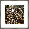 Fog And Fall Color Williams River Framed Print