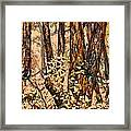 Foggy Forest Edge Framed Print