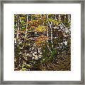 Forest Above The Cave Framed Print