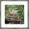 Forest Invitation Framed Print