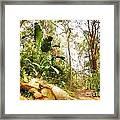 Forest Walk 6 Framed Print