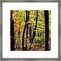 Forest Waves Framed Print
