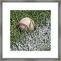 Foul Ball Framed Print