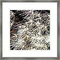 Fourth Of July Fireworks Framed Print by Kim Bemis
