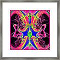 Fractal 15 Color Cacophony  Framed Print