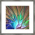 Fractal Bird Of Paradise Framed Print