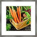 Fresh Picked Healthy Garden Vegetables Framed Print