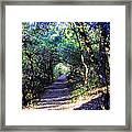 Frodo's Tunnel Framed Print