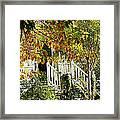 Front Porch Color Framed Print