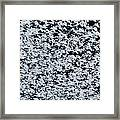 Frost Flakes On Ice - 17 Framed Print