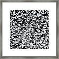 Frost Flakes On Ice - 24 Framed Print