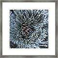 Frosty Fort Collins Morning Framed Print by Michael Gourley