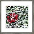 Frozen Flower Framed Print
