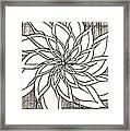 Full Bloom Iv  Framed Print