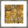 Full Yellow Framed Print