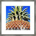Funky Fountain Framed Print by Tammy Wallace