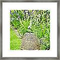 Garden Decoration Framed Print