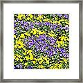 Garden Design Framed Print