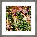 Garden Flair Framed Print